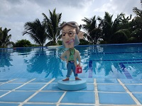 Docman by the pool